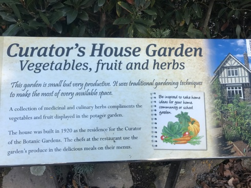 H is for Herb Garden