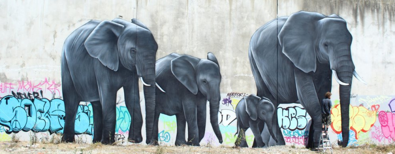 Elephants on Manchester.png